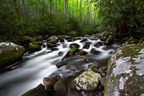 green water creek forest river landscape outdoors nationalpark woods rocks hiking northcarolina backpacking cascade appalachians greatsmokymountainsnationalpark forneycreektrail forneycreek