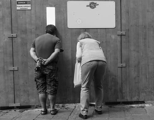 Curiosity | by Georgie Pauwels