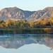 Lori S Heintzelman- Sunrise at Walden Ponds