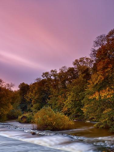 uk longexposure morning autumn trees water leaves sunrise landscape dawn colours tranquil autumnal malton northyorkshire subtle riverderwent mamiya645afdii leafaptus22 mediumformatdigitalback markmullenphotography kirkhamweir oakcliffwood