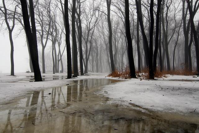 Wintermission