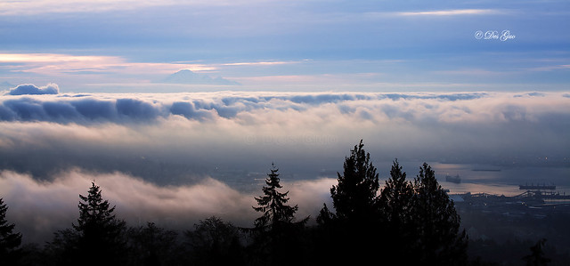 Fog covering Metro Vancouver