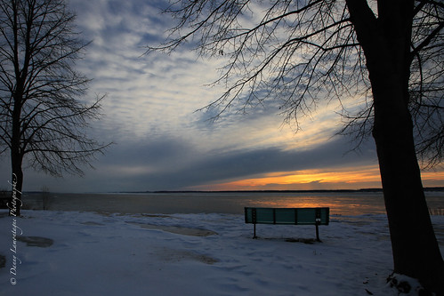 trees winter snow cold sunrise canon bench solitude alone heart empty hiver neige banc vide matin markiii spece levéesoleil