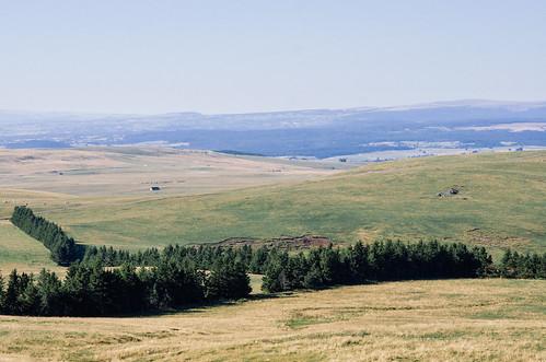 Depuis le sommet de la montagne de Paillassère, vue sur le désert du Cézallier
