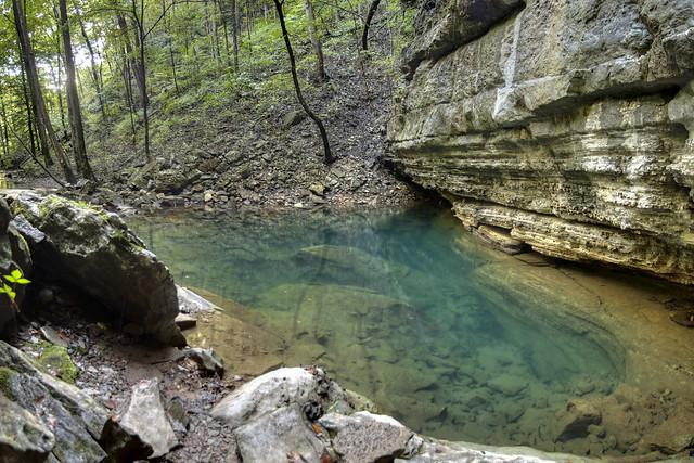 Big Spring 3, Bridgestone Firestone Centennial Wilderness WMA, White Co, TN