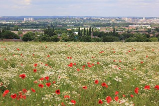 View over Nottingham from Sharphill | by Guy R