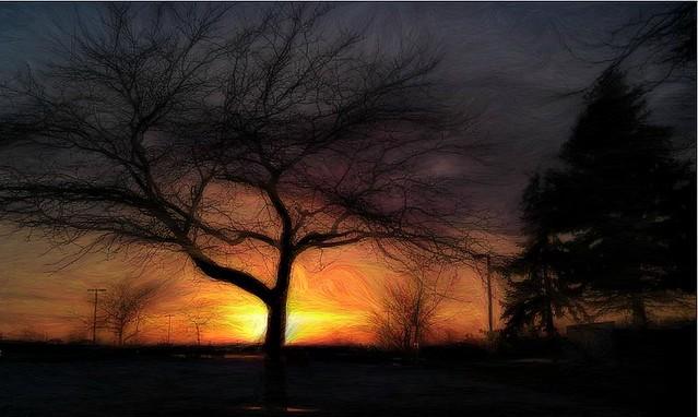 Winter Fire Sunset