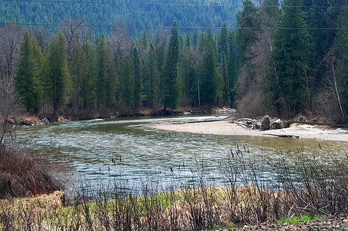 Eagle River, Eagle River Park, Malakwa, Shuswap, Thompson Okanagan, British Columbia, Canada