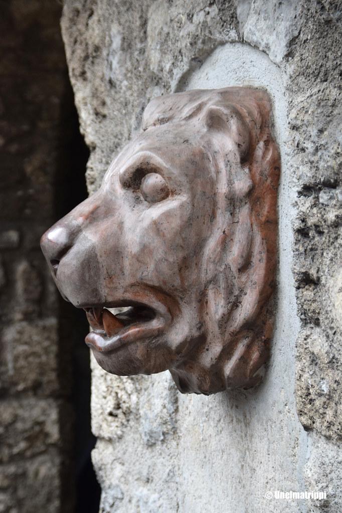 Leijonanpääkoriste Hohenwerfenin linnassa