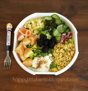 Smart Planet Ultrathin Saladbook Review | by sherimiya ♥