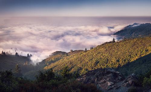 california ca panorama mountain northerncalifornia fog photography bay photo nikon photograph bayarea mounttamalpais mttamalpais kevinmacleod d800e nikond800e unrangedcom