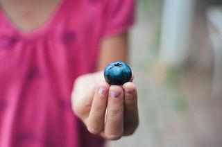 Franken-berry!! | by Bre LaRow