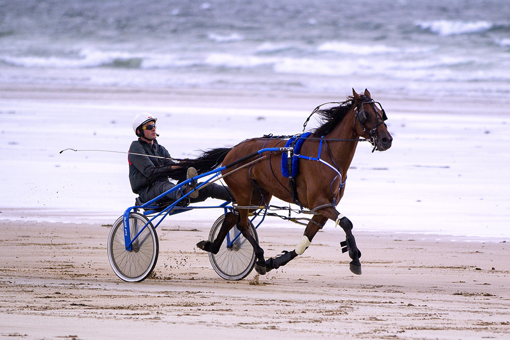 Sulky racing on Doolough strand | For 19 years now the local… | Flickr