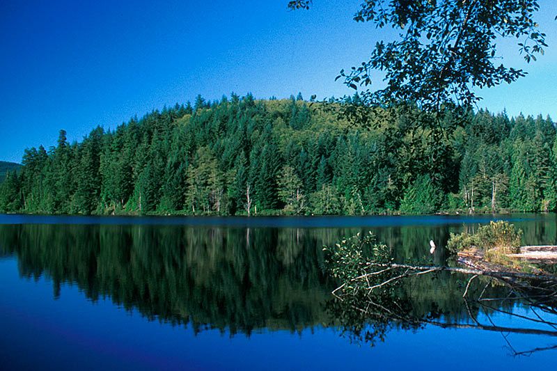 Mixal Lake, Irvines Landing, Sechelt Peninsula, Sunshine Coast, British Columbia, Canada
