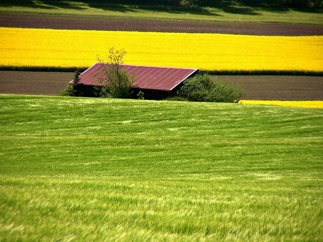 ILU- Schwäbische Alb , Scheune zwischen Feldern , 74017/3503