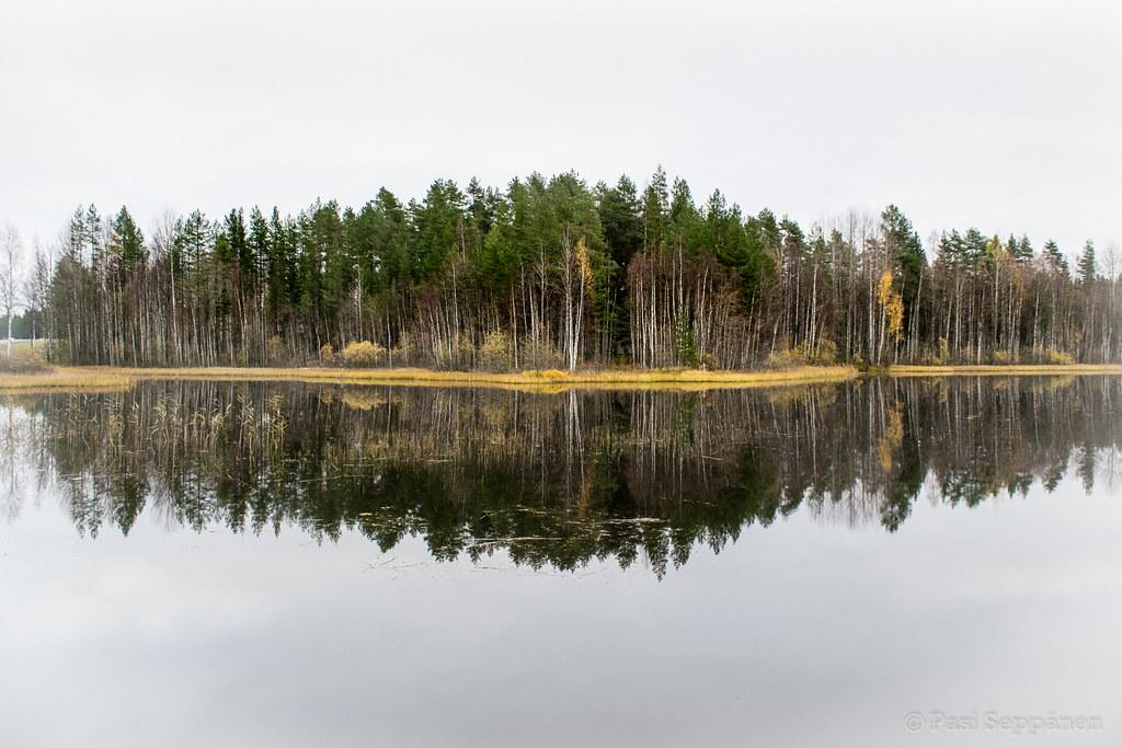Pasi Seppänen