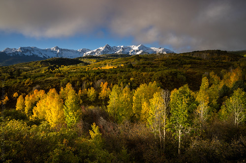 aspen aspens autumn batch1 colorado copyrighted dallas divide fall mountains peak peaks range rockies rocky sanjuan sneffels snow
