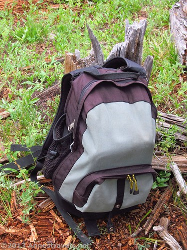 A day pack in the forest of Colorado