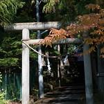 Takayama-30