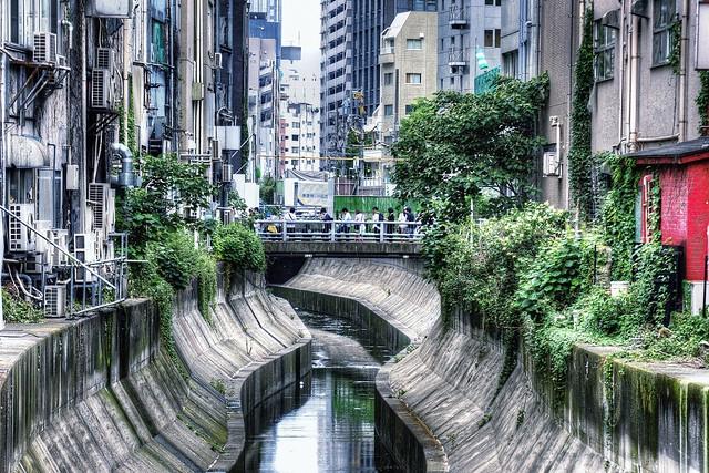都会の川 - The Urban River