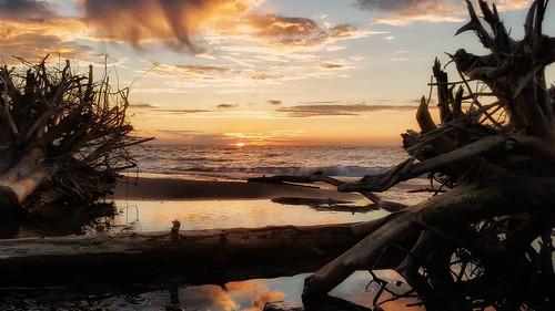 sunrise reflection driftwood canada toronto scarborough