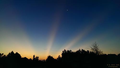 tanyeri şafak morning anticrepuscularrays nature outdoor us usa nc dawn photography anticrepuscular sunrise landscape cary northcarolina goldenhour iphonephotography iphone