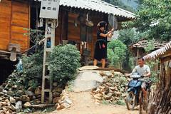 Vietnamese Minority Woman Threshing Rice
