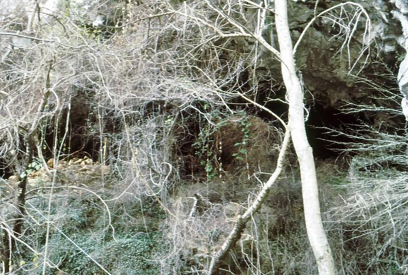 Val Pennavaira 1982-0019