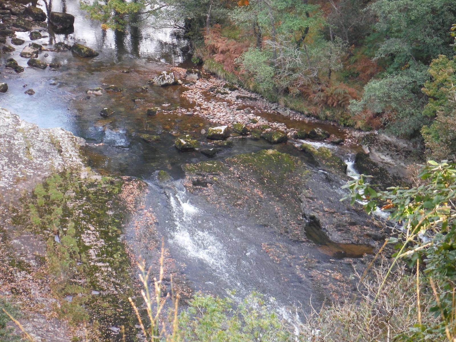 Rapids on the Afon Tawe SWC Walk 280 Henrhyd Falls - Sgwd Henrhyd (Craig y Nos Circular)