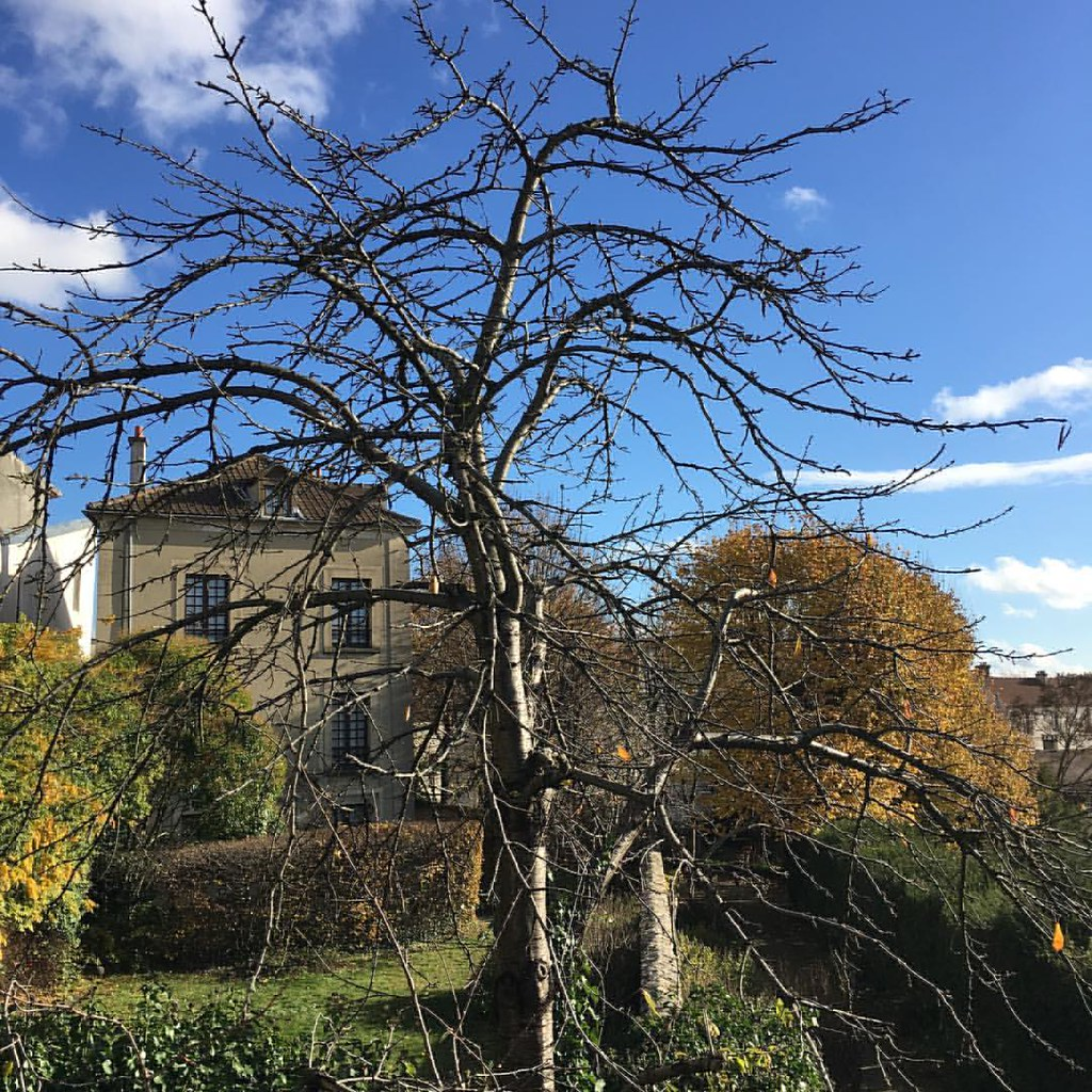 #musee #museejeanjacquesrousseau #montmorency #france #automn #autumn #autumn🍁 #autumn2016 #museum