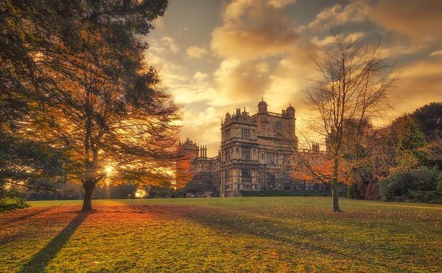 Last Fall Of Autumn