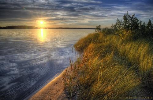 sunset usa tree water reflections landscape nikon delaware d700 tomlussier