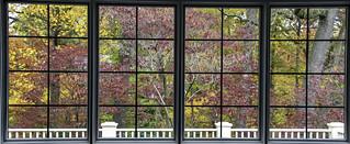 Backyard Autumn | by Charles Patrick Ewing