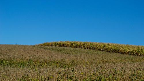 corn time horizon harvest biodiesel soybeans ethanol jacksoncounty sdgiere