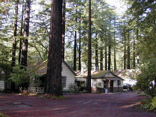 Redwood Cottages in Miranda