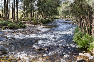 Barrington River at Barrington Tops Road crossing | by Martin7d2
