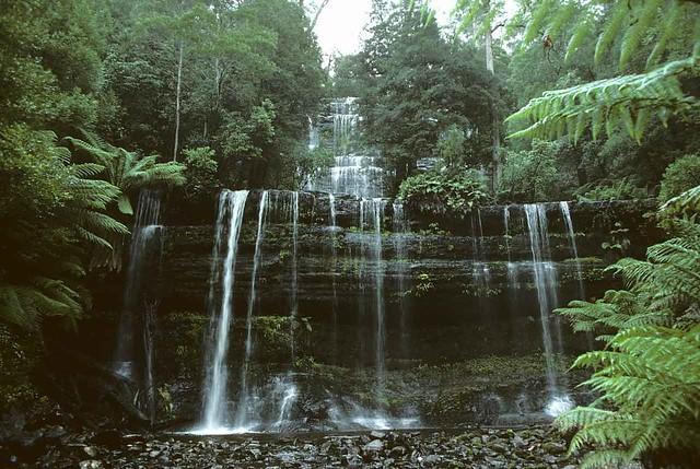 Russell Falls – Tasmania Australia