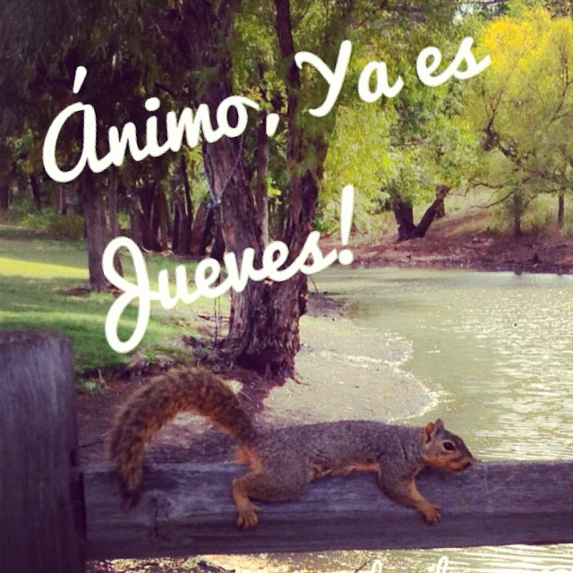 Jueves Casi Viernes ánimo Latinos Lasblogueras Latin Flickr