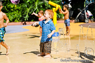 sea world (18 of 29).jpg   by Carly's Photography