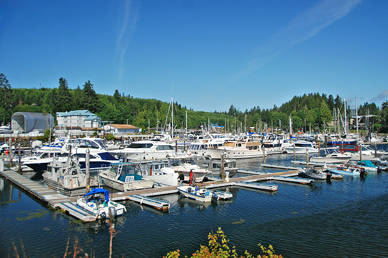 Marina in Port Hardy, North Vancouver Island, British Columbia, Canada