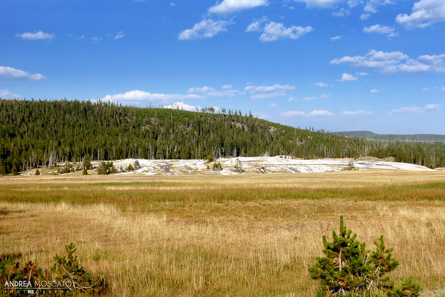 Geyser Hill - Yellowstone National Park, Wyoming