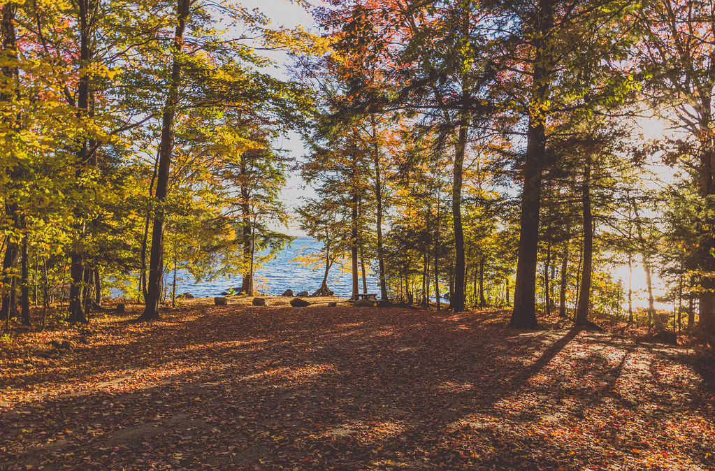 New England Autumn - Fall Colors at Cranberry Lake Campground, Upstate New York