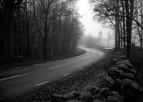 Misty | by etherlore