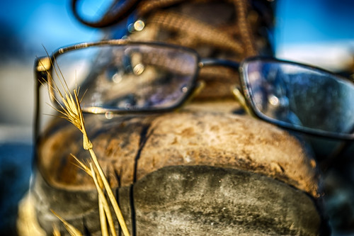 old leather shoe glasses weed nikon dof bokeh rubber dirty worn d200 scratched hdr laces hcs explored photobomb clichesaturday hbmike2000 seeingeyeshoe
