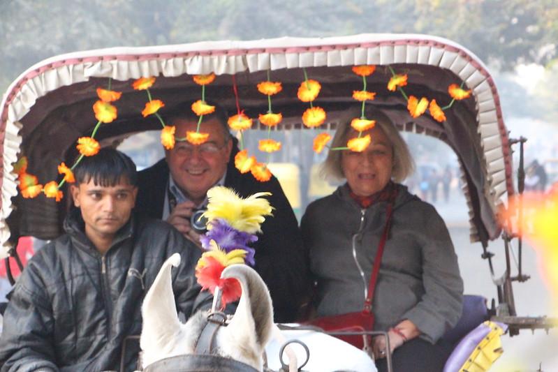 Enjoy Horse Cart Ride
