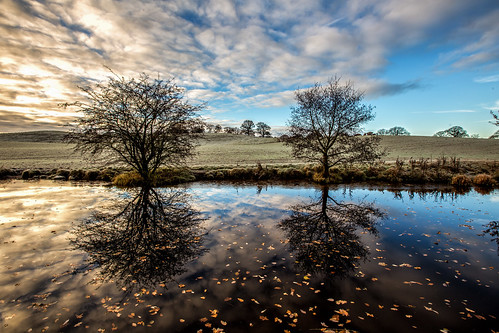 ian wright finwrightphotographycouk ianwright canal llangollen llangollencanal llangollenbranch shropshireunion fin canon 6d 1635 water cold ice reflection trees ellesmere shropshire autumn winter frost cloud england
