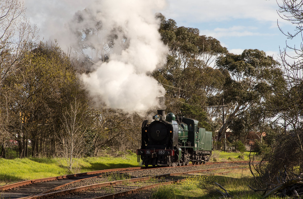 K163 at Mornington by michaelgreenhill