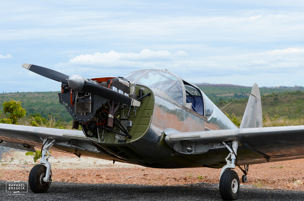 Globe Swift GC-1B | Raphael Brescia | Flickr