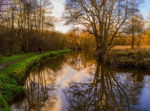uk trees light sunset england sky sunlight reflection green nature water grass clouds reflections landscape geotagged daylight canal nikon scenery day colours view scenic peaceful bluesky walker naturalbeauty footpath staffordshire tranquil cauldoncanal nikond3200 staffordshiremoorlands 2013 d3200 consallforge
