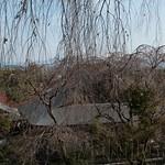 Kyoto-110